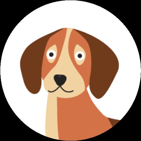 gezonde hondenbrokken